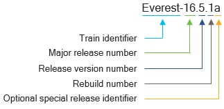 A diagram that outlines the components of release names for the Cisco IOS XE Software Release 16 trains, using a release from the Everest 16.5 train as an example.