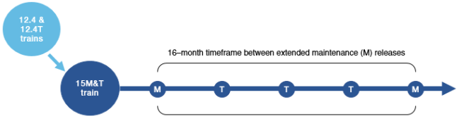 A diagram that illustrates the time-based relationship between extended (M) and standard (T) maintenance releases for all releases from the Cisco IOS Software Release 15M&T train prior to Release 15.6(3)M.